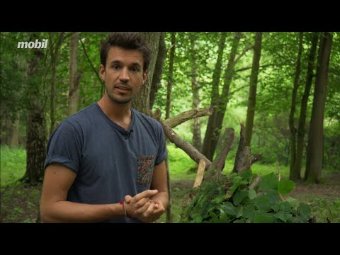 """Überleben in der Wildnis: """"Biwak bauen"""""""